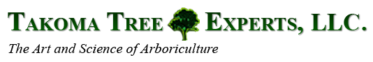 Takoma Tree Experts, LLC